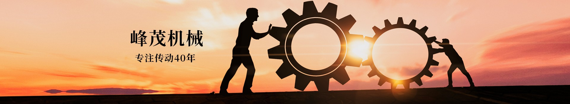 东莞市峰茂机械设备有限公司,专注齿条齿轮传动40年